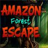 Amazonas-Regenwald Escape Spiel
