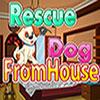 Rettungshund vom Haus Spiel