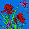 Wiesel Garten Färbung Spiel